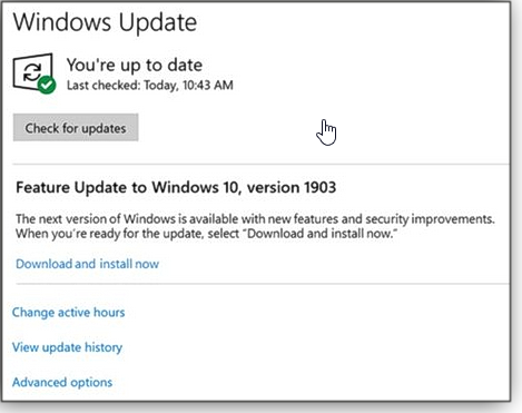 Version 1903 Windows Update