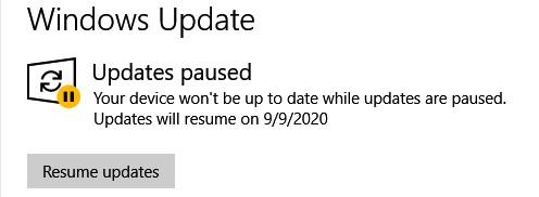 2020-08-05-pause-updates