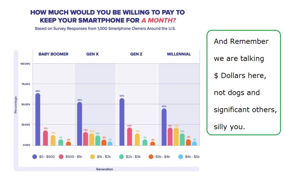 Smartphone-Survey